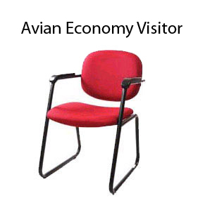 Avian Economy Visitor