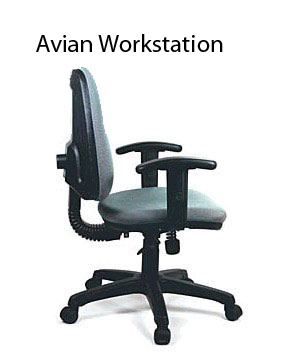 Avian Workstation